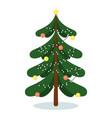 isolated evergreen christmas fir tree vector image