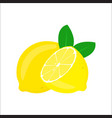 lemon with leaves isolated on white background vector image vector image