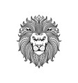 lion head line art vector image