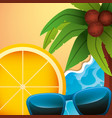 summer time concept vector image vector image