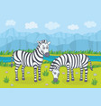 two zebras in nature vector image vector image