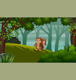 a squirrel on hill vector image vector image