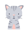 cat cute animal baby face vector image vector image