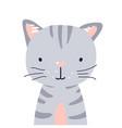 cat cute animal baface vector image vector image