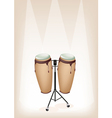 Congas with Stand on Brown Stage Background vector image vector image