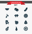 fruit icons set with clove acorn plant and other vector image