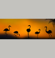 group flamingo silhouettes at sunset vector image