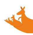 kangaroo recursion lot of australian kangaroos vector image