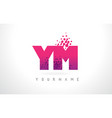ym y m letter logo with pink purple color and vector image vector image