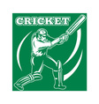 cricket player background vector image vector image