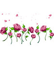 pink peonies pattern peony flowers on vector image