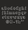 retro serif font uppercase lowercase vector image