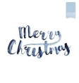 Wet brush watercolor lettering that says Merry vector image vector image