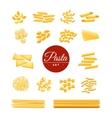 Italian Traditional Pasta Realistic Icons Set vector image