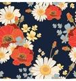beautiful wild flowers poppies vector image vector image