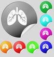 Lungs icon sign Set of eight multi colored round vector image vector image