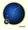 Scorpio constellation vector image