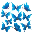 Set butterflies vector | Price: 1 Credit (USD $1)
