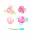 set watercolor flower elements vector image
