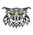the head of an owl a night bird of prey a vector image vector image