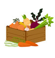 veggie box with vegetables hand drawn healthy vector image vector image