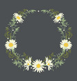 hand drawn wreath with camomile and herbs vector image vector image