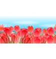 Red tulips horizontal seamless pattern vector image