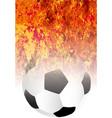 roaring flaming soccer ball vector image