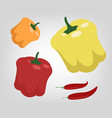 flat peppers vector image vector image