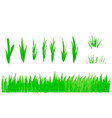 hand drawn watercolor grass set isolated on white vector image