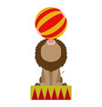 isolated circus lion vector image