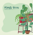 plants in pots decor stand ornament green vector image vector image