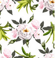 rose seamless pattern2 vector image