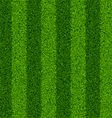 seamless green grass field vector image vector image