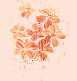 elegant floral background in pastel orange vector image