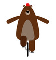 isolated circus bear vector image vector image