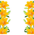 orange lily border on white background vector image vector image