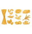 realistic macaroni italian dry wheat food vector image