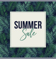 summer sale web banner poster with tropical vector image vector image