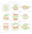 Set of hand drawn natural badges and labels vector image