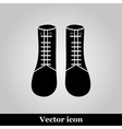 Boots icon isolated on background vector image