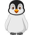 Cute baby penguin posing isolated vector image vector image