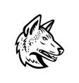 gray wolf or arabian wolf head mascot black vector image vector image