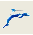marine dolphin jumps vector image