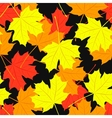 seamless pattern maple leaves autumn vector image vector image
