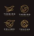 set line art geometric bird logo icon template vector image