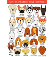 Set of 24 colored dogs different breeds handmade vector image