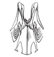 sternum of a robin vintage vector image vector image
