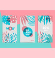 stories template for mobile phone social vector image vector image