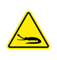 attention crocodile alligator on yellow triangle vector image vector image